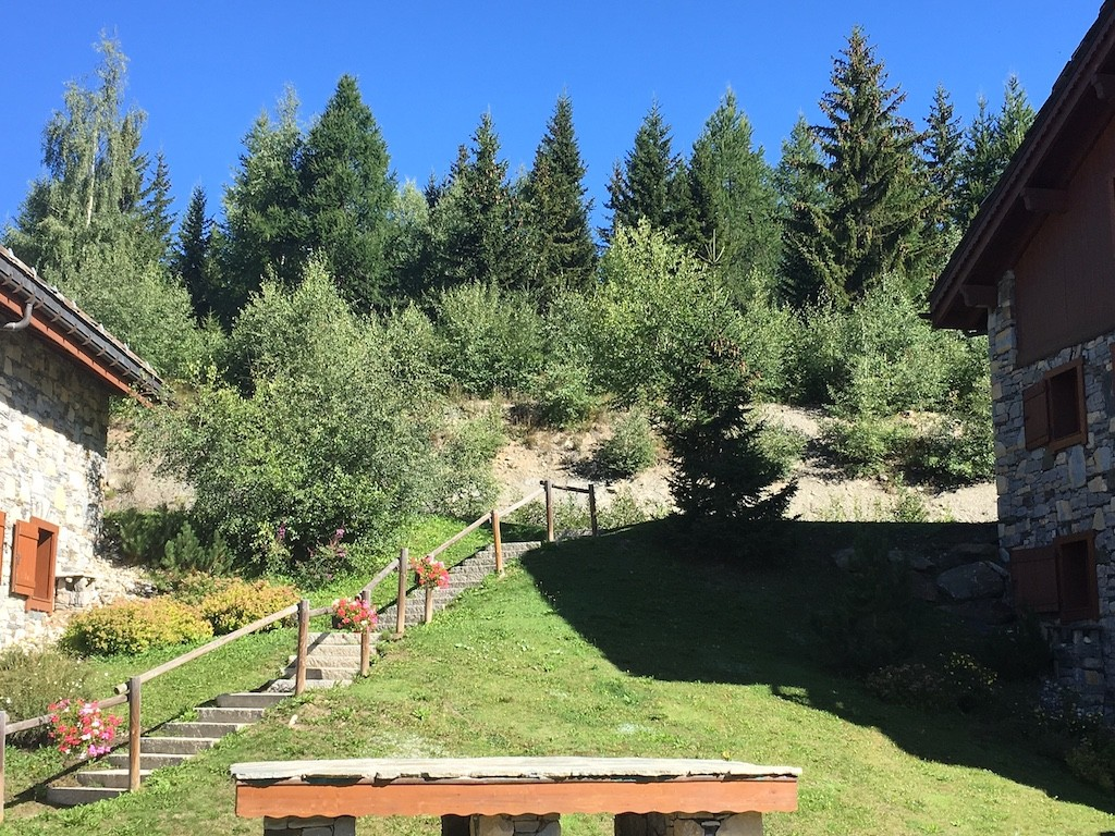 Les propriétaires des Cimes Blanches veulent conserver cette bande de végétation composée de sapins et bouleaux qui les isolera d'éventuelles futures constructions.