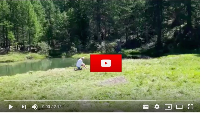 Cliquez sur l'image pour voir la vidéo
